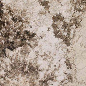 alpine-white-granite-1-300x300 GRANIT