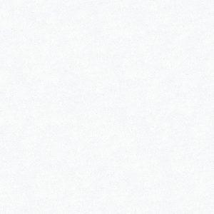 porcelain-white-close-600x600-300x300-300x300 QUARTZ LG