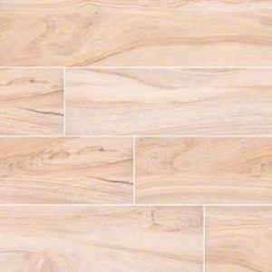 www.msisurfaces.com_b18c_artic-aspenwood-porcelain-300x300 PORCELAINE